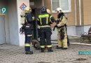 В пожаре в микрорайоне Зеленый Лог погибли домашние животные. Люди не пострадали